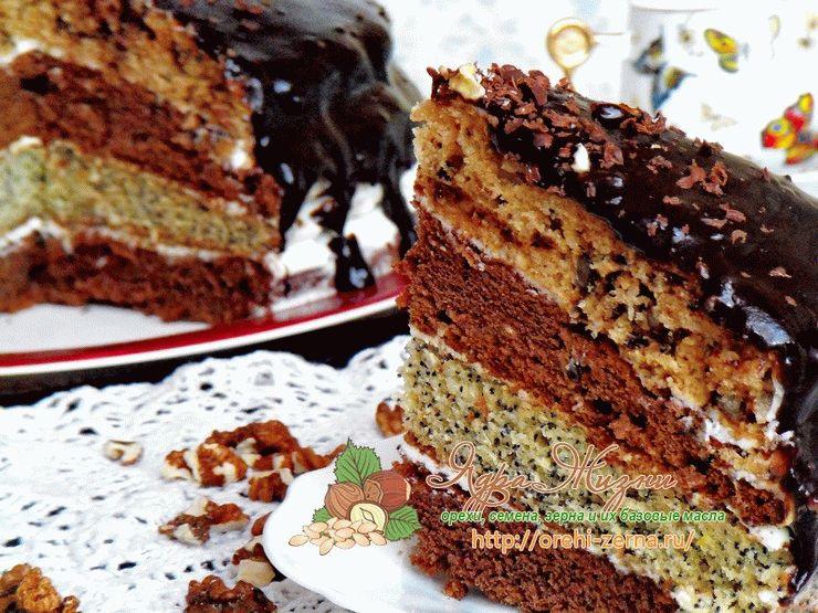 рецепт торта поцелуй негра с фото которые основываются решении