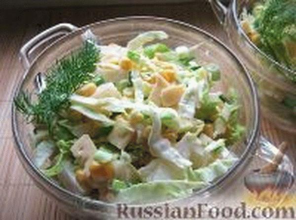 salatskuritseyiananasamiipekinskoy_68298D24.jpg